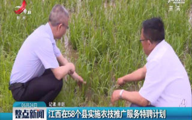 江西在58个县实施农技推广服务特聘计划