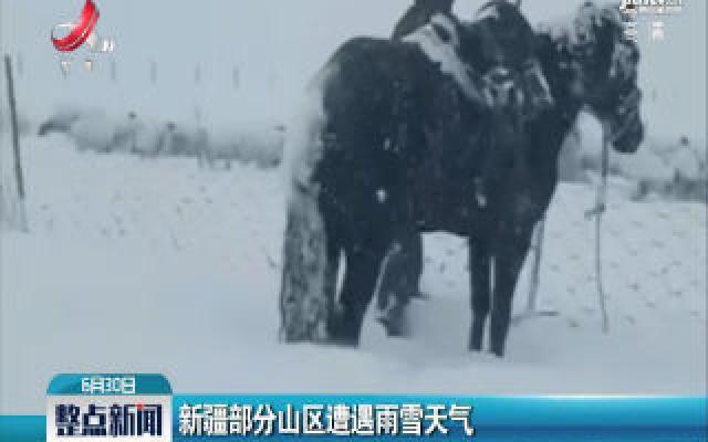 新疆部分山区遭遇雨雪天气