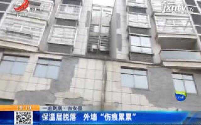 """【一追到底】吉安县:保温层脱落 外墙""""伤痕累累"""""""