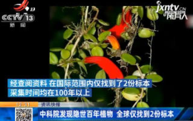 中科院发现隐世百年植物 全球仅找到2份标本