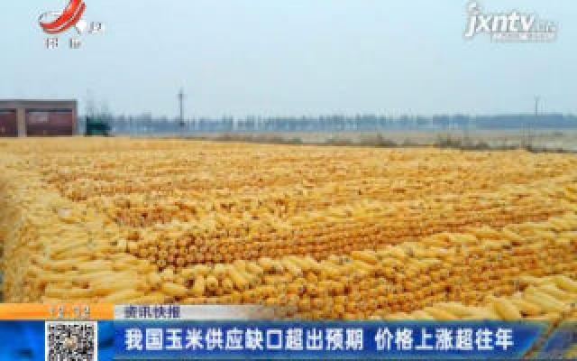 我国玉米供应缺口超出预期 价格上涨超往年