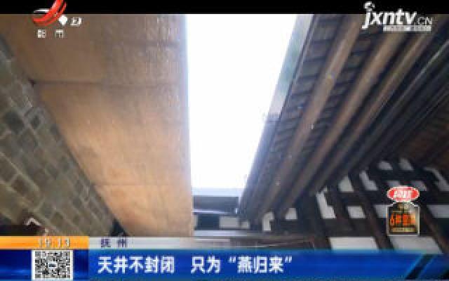 """抚州:天井不封闭 只为""""燕归来"""""""
