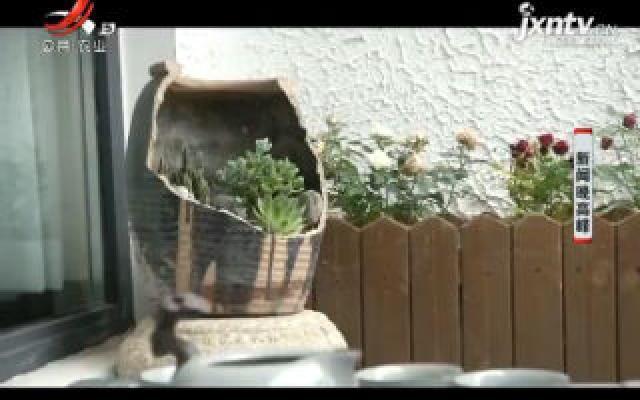 西安:美出新意!农家小院变身美丽庭院