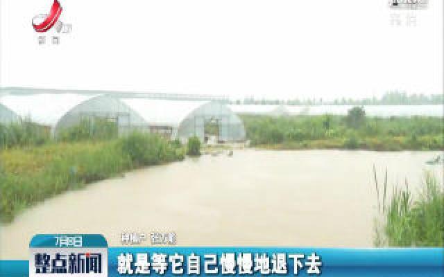 【持续强降雨来袭】高安:农业生产遭受损失