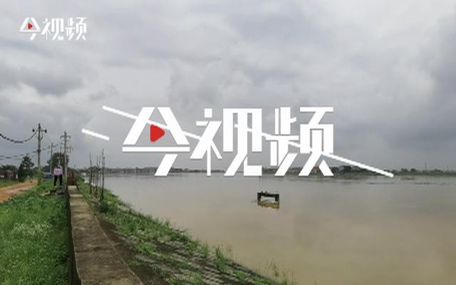 航拍鄱阳县问桂道圩发生漫决 9000余名群众全部安全转移