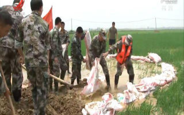 永修县九合联圩出现泡泉 突击队紧急抢险