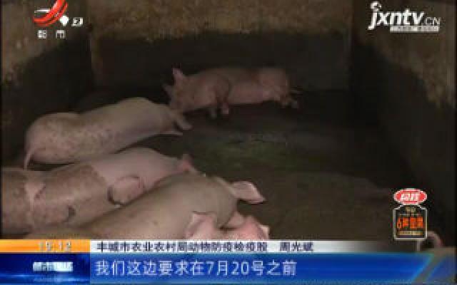 """【""""病害猪无害化处理补贴两年没到位""""后续】宜春丰城:有关部门正在办理 补贴7月底有望发放到位"""