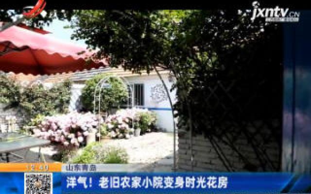 山东青岛:洋气!老旧农家小院变身时光花房