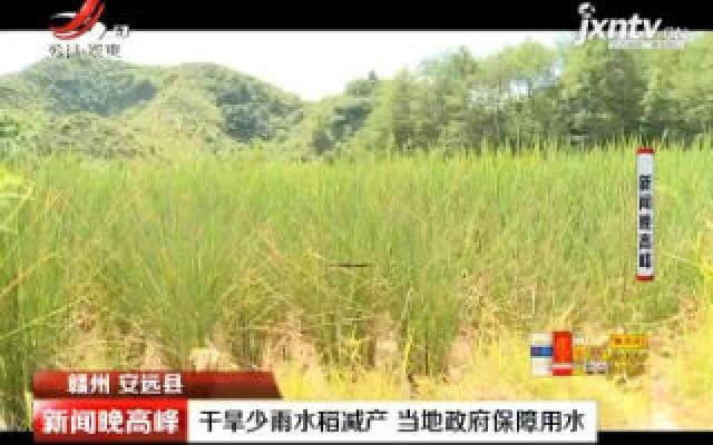 赣州安远县:干旱少雨水稻减产 当地政府保障用水