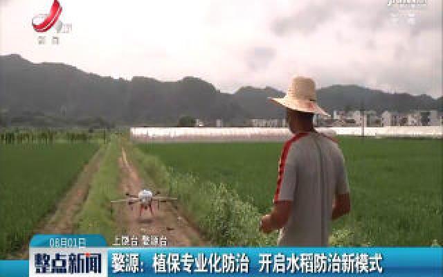 婺源:植保专业化防治 开启水稻防治新模式