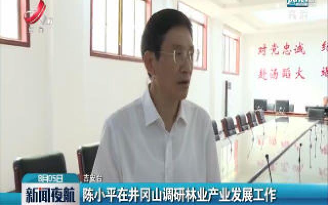 吉安:陈小平在井冈山调研林业产业发展工作