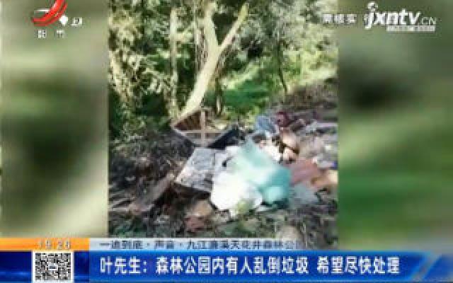 【一追到底·声音·九江濂溪天花井森林公园】叶先生:森林公园内有人乱倒垃圾 希望尽快处理