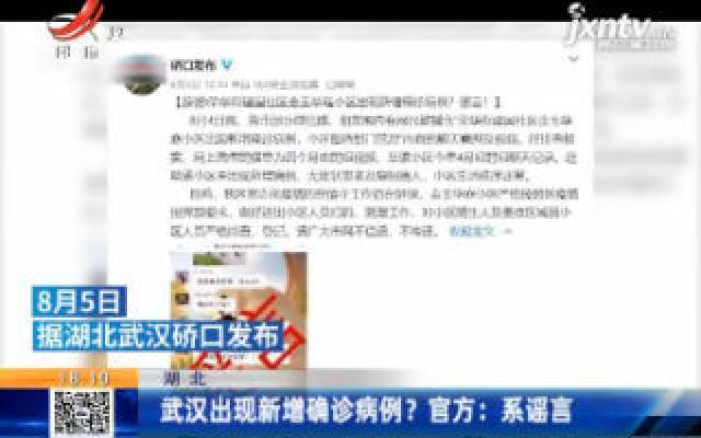 湖北:武汉出现新增确诊病例?官方:系谣言