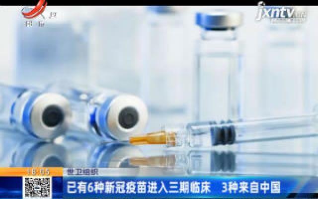世卫组织:已有6种新冠疫苗进入三期临床 3种来自中国