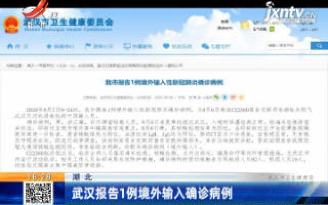 湖北:武汉报告1例境外输入确诊病例
