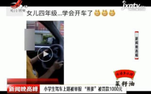 """江苏:小学生驾车上路被举报 """"熊爹""""被罚款1000元"""