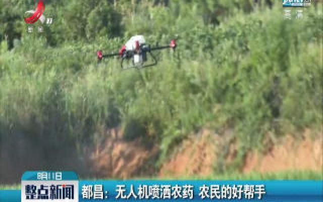都昌:无人机喷洒农药 农民的好帮手