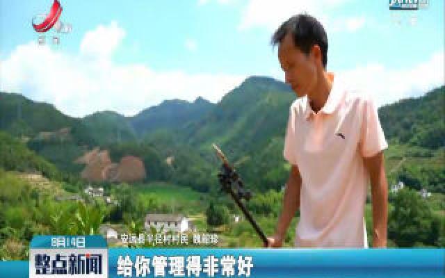 【走向我们的小康生活】半径村:网红新农民 直播间里做农活