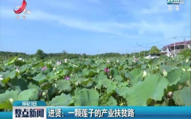 进贤:一颗莲子的产业扶贫路