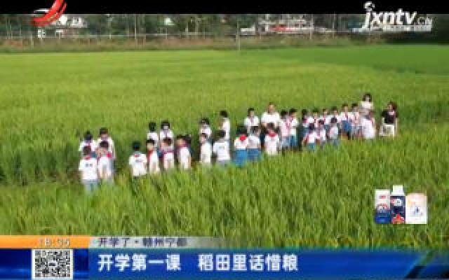 【开学了】赣州宁都:开学第一课 稻田里话惜粮
