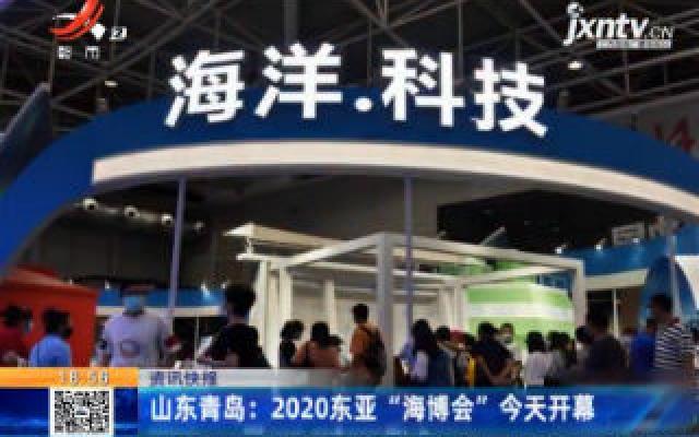 """山东青岛:2020东亚""""海博会""""9月22日开幕"""