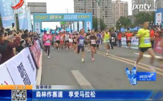 宜春靖安:森林作赛道 享受马拉松
