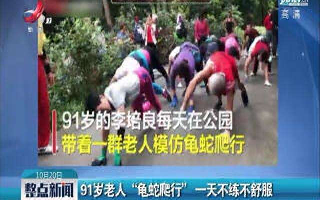 """广州:91岁老人""""龟蛇爬行"""" 一天不练不舒服"""