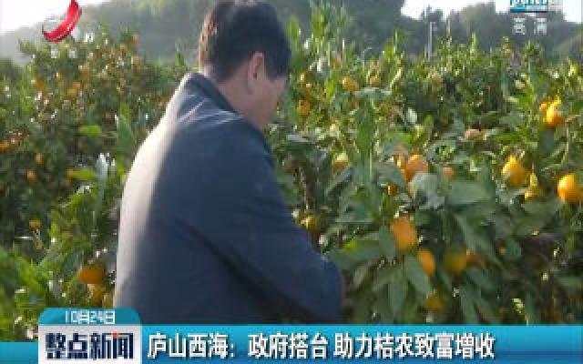 庐山西海:政府搭台 助力桔农致富增收