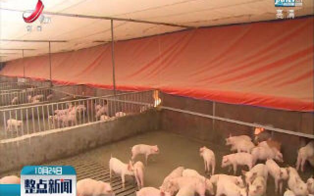 江西生猪产能连续13个月环比增长