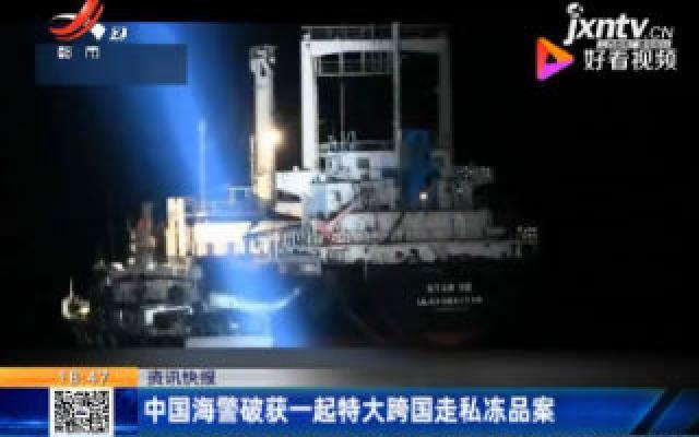 中国海警破获一起特大跨国走私冻品案