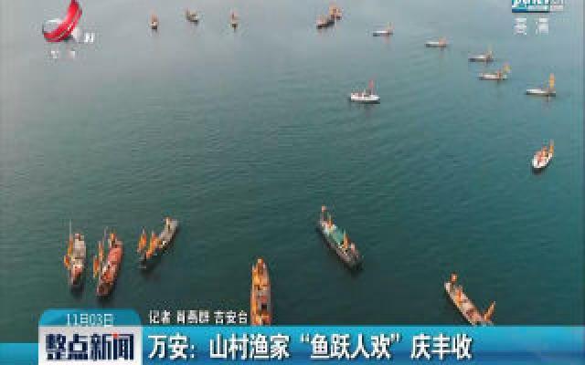 """万安:山村渔家""""鱼跃人欢""""庆丰收"""