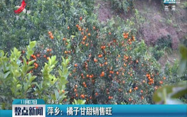 萍乡:橘子甘甜销售旺