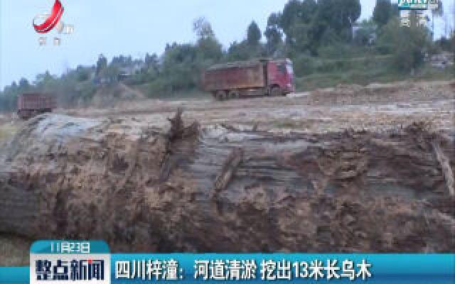 四川梓潼:河道清淤 挖出13米长乌木