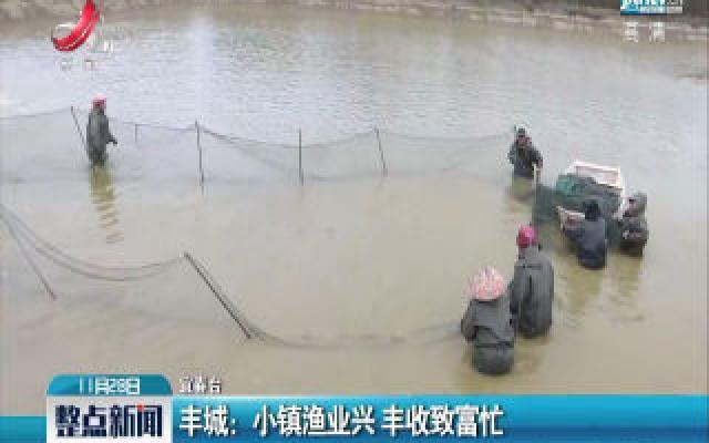 丰城:小镇渔业兴 丰收致富忙