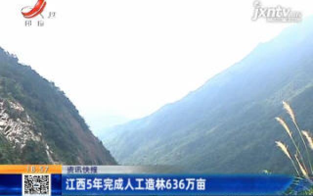 江西5年完成人工造林636万亩
