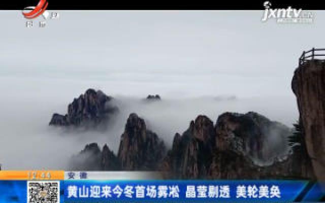安徽:黄山迎来今冬首场雾凇 晶莹剔透 美轮美奂