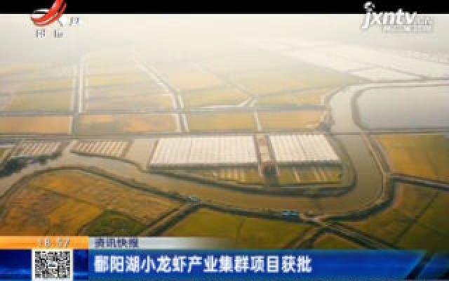 鄱阳湖小龙虾产业集群项目获批